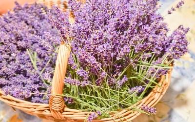 Lavendelsäckchen gemeinsam gestalten 29.07.2019
