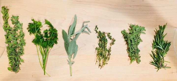 parsley, sage, oregano, marjoram, thyme, rosemary,