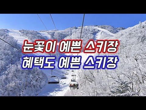 Muju Resort Ski Resort 2021 Season门票评论_超赞的优惠…