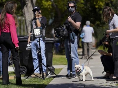 Lady Gaga memulihkan anjing yang diculik …  500 juta won