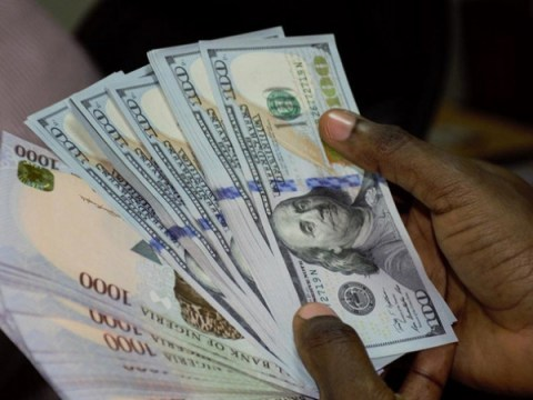 We Can't Pay School Fees Of Our Children Studying Abroad Because Of Dollar Scarcity—Nigerian Parents