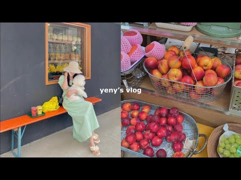 [Daily Vlog] Everyday vlog for office workers in their late 30s/Summer One Piece Howl Lookbook, Busan Jeonpo-dong Cafe Restaurant Recommendation, Bichon Prise Kim Eun-dol, Product Sponsor: Daniel Wellington