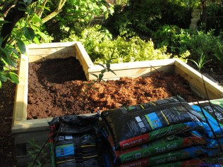 Filling with topsoil and coir chunks. Layer by layer mixed in.