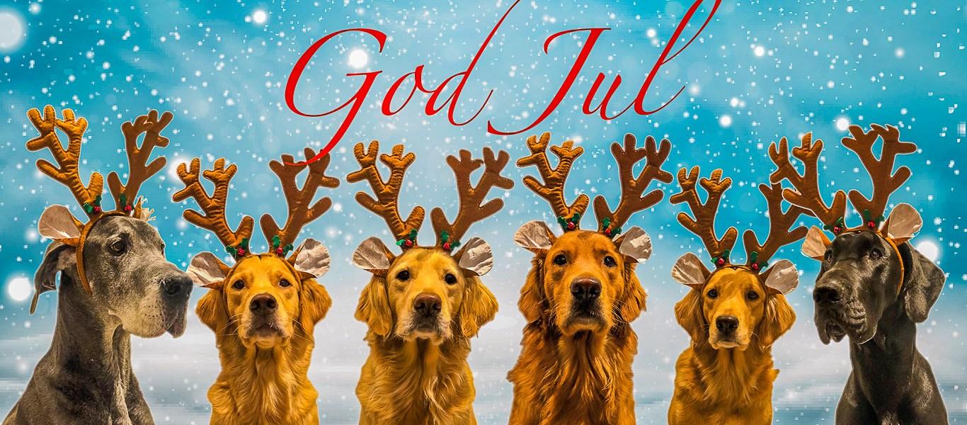 God Jul och Gott Nytt 2021