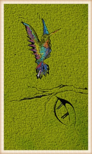 2_Hummingbird_Fotor