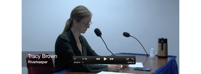 Tracy Brown at hearing on sewage right to know la