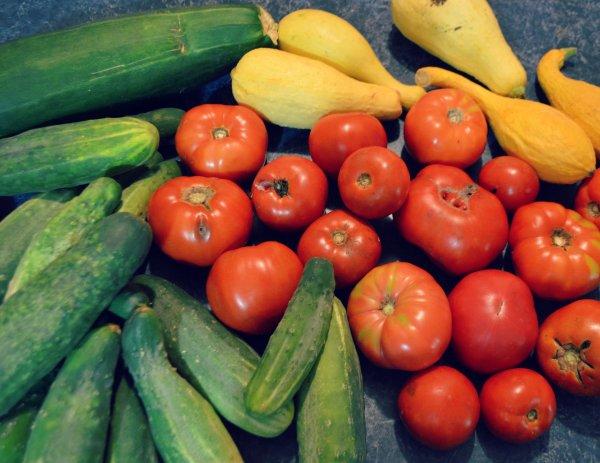 Fresh Veggies