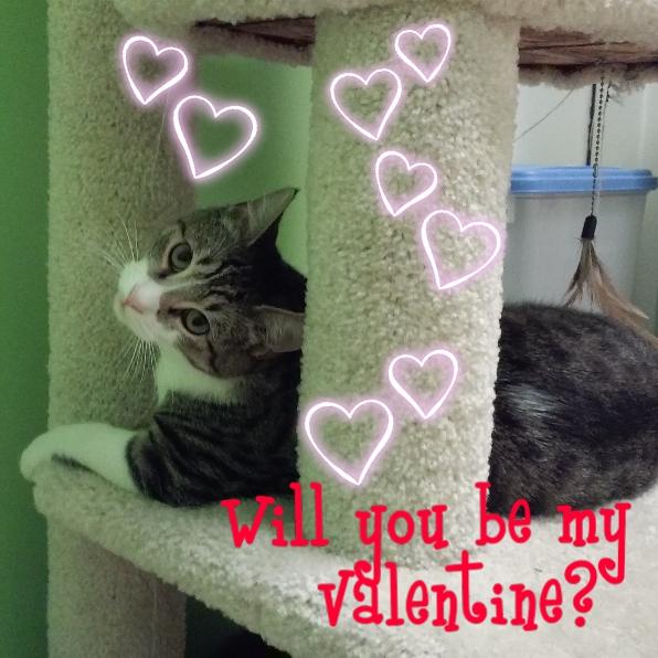 valentine Milton