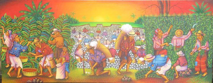 harvesting-coffee_guatemala