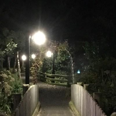 night bridge path