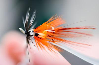 Fly-Fishing-Close-Up-Orange