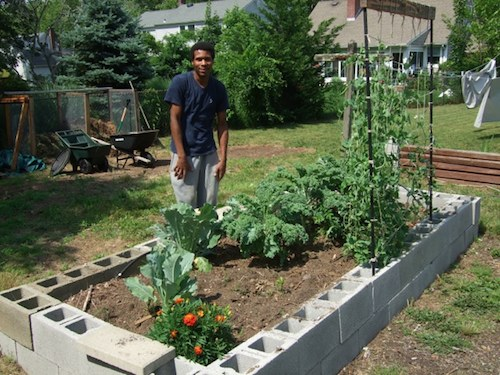 Cinder Blocks Are An Easy Way To Build Raised Garden Beds Riverheadlocal