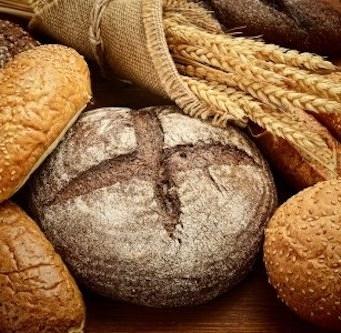 2013 1130 bread wheat