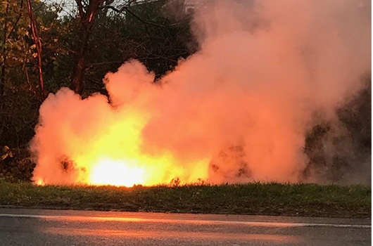 Downed power line sparks brush fire on Sound Avenue ...