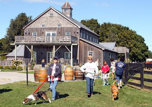 Martha Clara Vineyards, Kent Animal Shelter, Long Island Wine Country