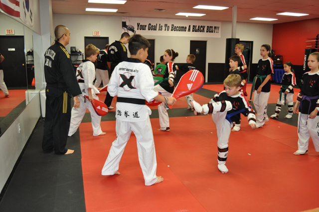 Expert_Martial_Arts-1