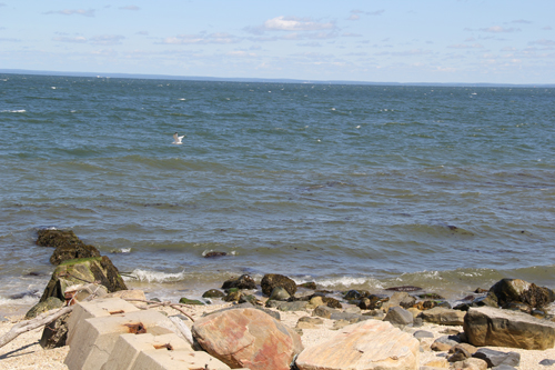 CARRIE MILLER PHOTO | Coast of the Long Island Sound in Greenport.