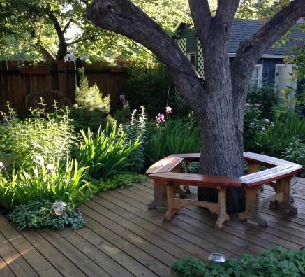 early morning summer garden