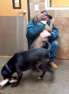 James Pack reunites with his beloved best friends, Bailey and Blaze. Lindsay Carrothers photo