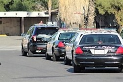 More than a half dozen police vehicles lined the street after the pursuit. Robert Carter photo
