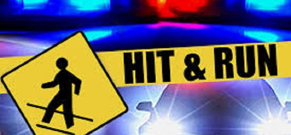 Image result for hit-and-run