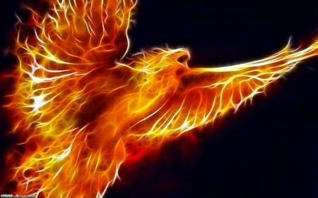 4818_fire