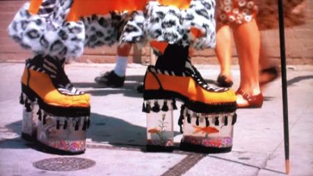 goldfish-shoes