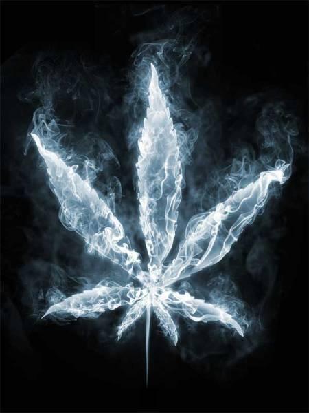 smoke-canabis-leaf