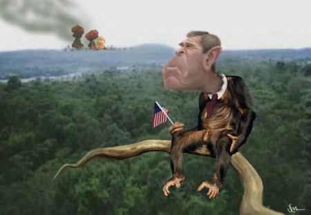 monkeybush1