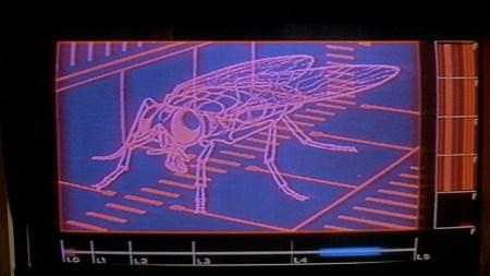 the_fly_david_cronenberg (2)