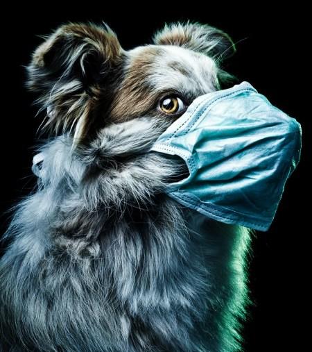 doctor_horror_by_wordup-d3k61wt