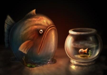 Big_Fish_Little_Fish_by_zilla774