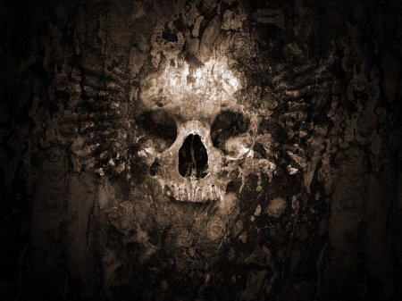 Skull_Wallpaper_V2_by_iRoot