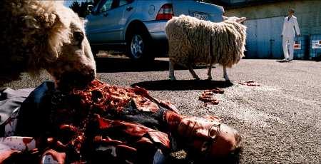 black-sheep-2