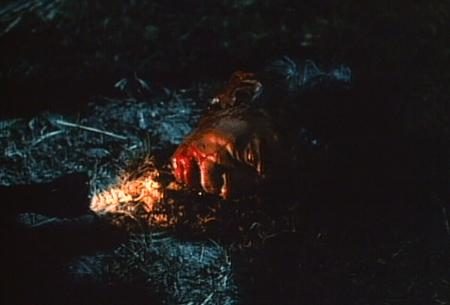 the-mutilator-horror (5)