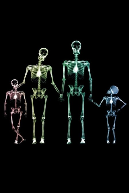 10303-family-skeletons-iphone-hd-wallpaper_640x960