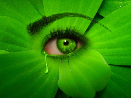 green_eye_by_mu6-d3kpd4j