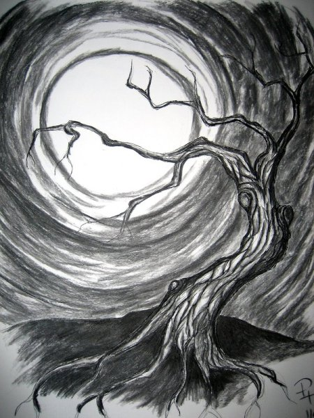 the_twisted_tree_by_cheezekeeper