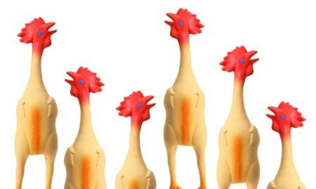 rubber_chickens