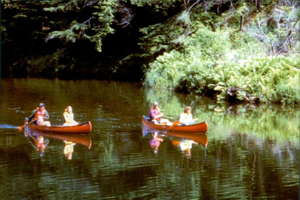 Canoeing along the Cape Fear River is a popular activity.