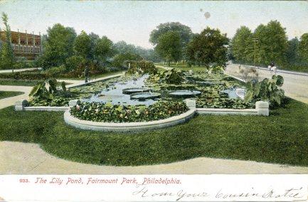 Lily Pond, Fairmount Park, Philadelphia, PA