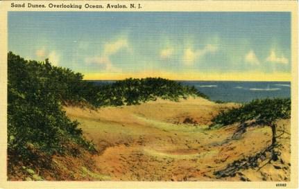 Sand Dunes Overlooking Ocean, Avalon, NJ 1940