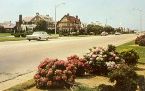 Homes and Grounds on the Parkway, Margate City, NJ