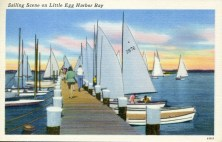 Sailing scene on Little Egg Harbor Bay