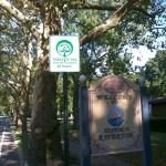 Tree City sign, Riverton Rd.