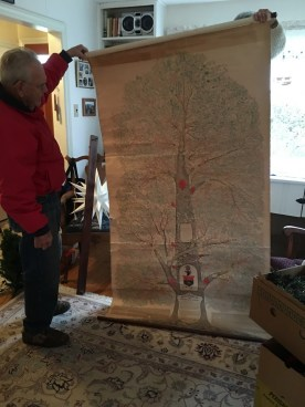 Bill Hall holds up the huge Lippincott Family Tree with help from his wife Nancy, standing on chair.
