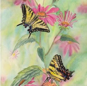 Swallowtail Cherie Den Boer