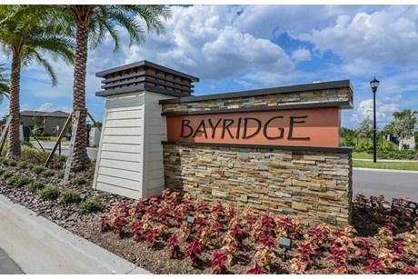 Bayridge Ruskin Florida New Homes Community