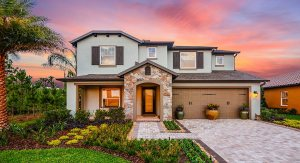 33647 New Home Communities New Tampa Florida