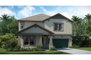 33578 & 33569 & 33579 Riverview Florida Real Estate | Riverview Realtor | New Homes for Sale | Riverview Florida
